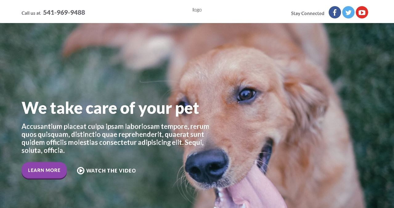 Pet Care Website